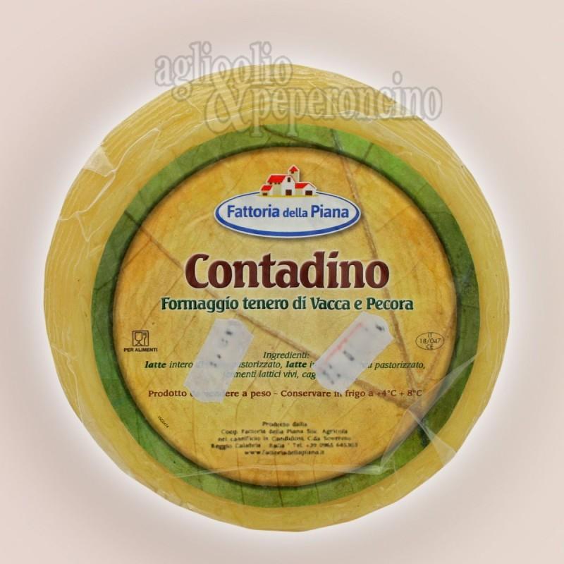 Contadino formaggio calabrese di latte misto - Fattoria della Piana